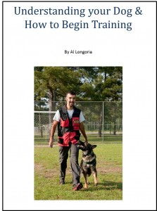 Understanding your dog & How to Begin Training