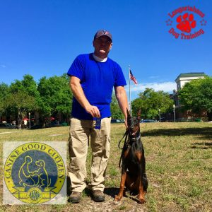 Houston Canine Good Citizen Doberman