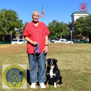 Houston Canine Good Citizen Aussie
